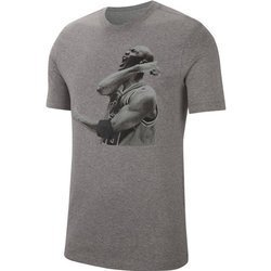 Koszulka Air Jordan Photo Nike T-shirt  Nike - CN3588-091