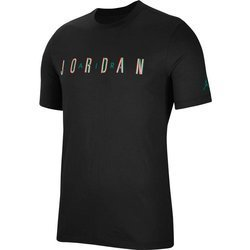 Koszulka Air Jordan Sport DNA Men's Short-Sleeve Crew - CN3330-011